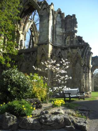 York Museum Gardens - Abbey Ruins