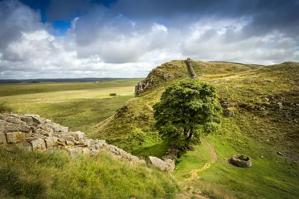 Sycamore Gap on Hadrians wall in northumberland