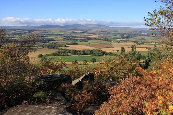 View to the Northumbrian Cheviot Hills in sunny autumn