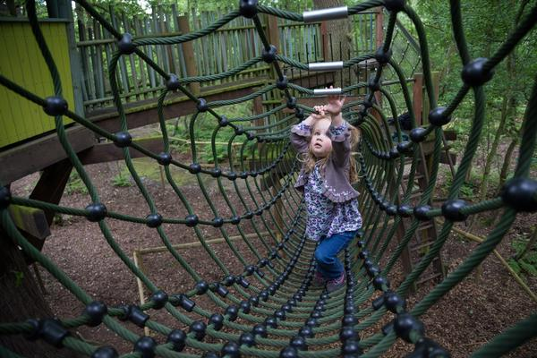 Small girl in scramble net