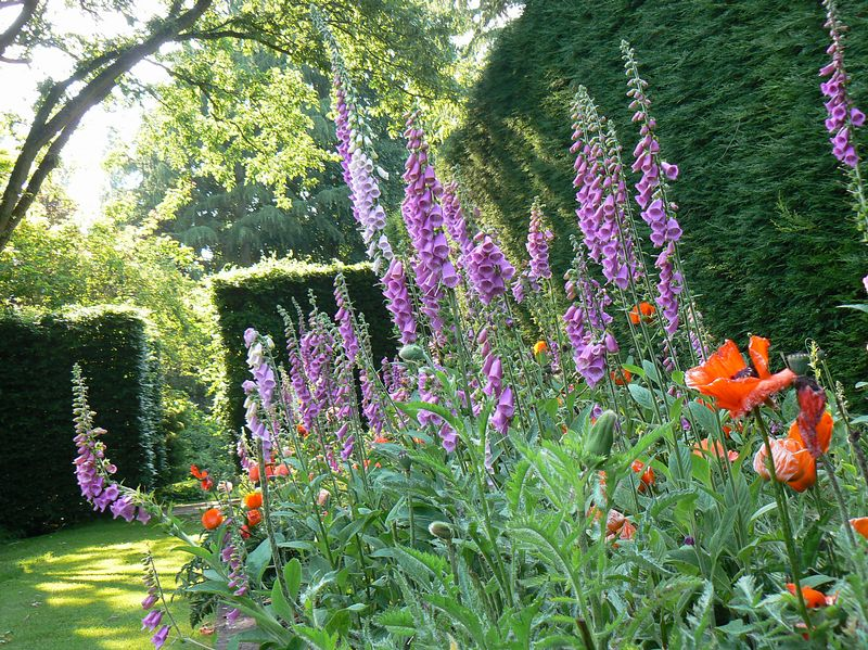 Marle Place Garden And Gallery On Aboutbritain Com