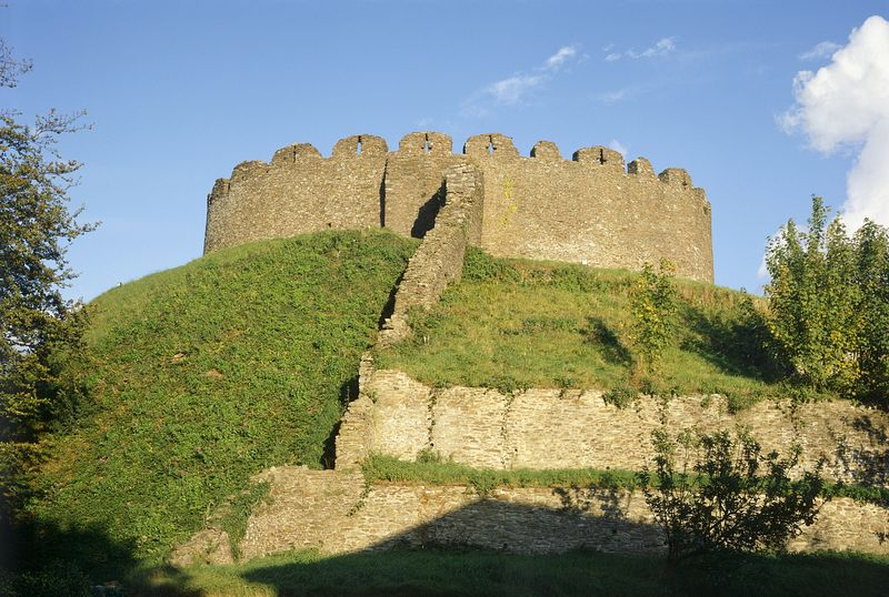 Best Big Dogs >> Totnes Castle on AboutBritain.com