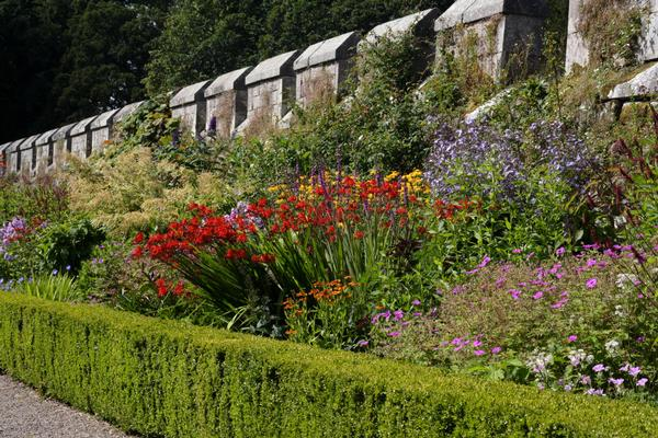 Flower border in the gardens at Chillingham Castle