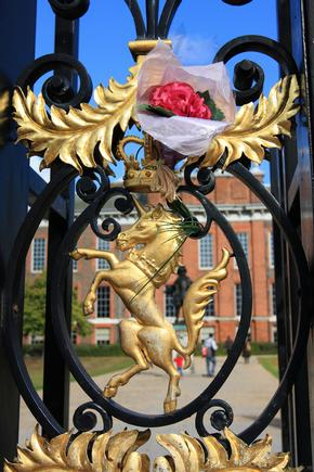 Rose placed in the Kensington Palace gates as a tribute to Diana, Princess of Wales