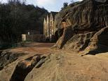 Kinver Edge and Rock Houses