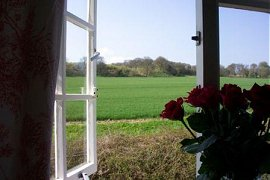 White Cottage Bed and Breakfast Dorset View2