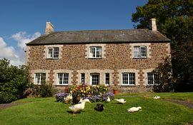 Farmhouse with ducks