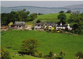 Cyfie Farm in its setting