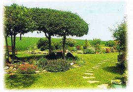Enjoy our country gardens