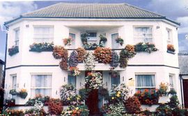 Sussex Lodge