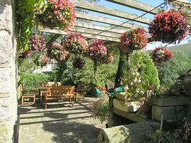 Underleigh - Terrace