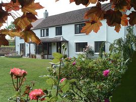 Tremaine Farm B&B Accommodation Cornwall