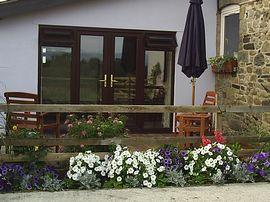 Room door & patio