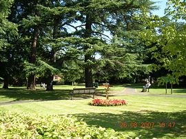Front view over park