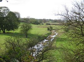 Pasture field along River Ouse