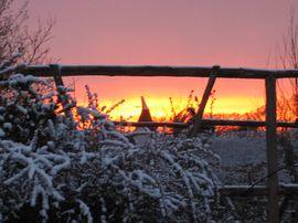 Beautiful sunset from the garden