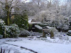 Beautiful even in Winter!