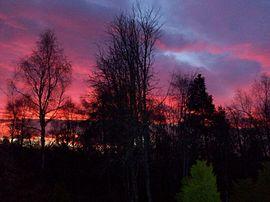 Sunrise from patio