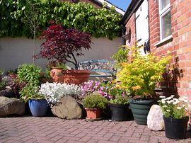 Suntrap in the courtyard