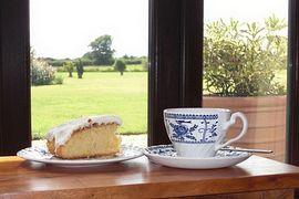 Tea overlooking the garden