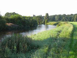 Local riverside walk