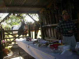 Annual Pirton Fete at Pirton House Farm
