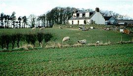 Topmuir Farm