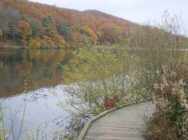 Linacre Valley