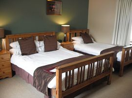Family/Twin/Double Room