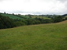View from Beeches.