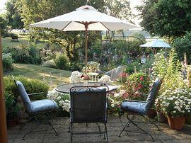 The Garden on a Summer's Eve