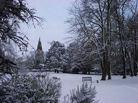 The Garden in Snow