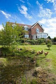 House, Garden & Chickens!