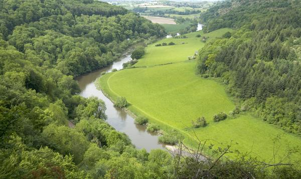 View of the of the Wye Valley from Symonds Yat