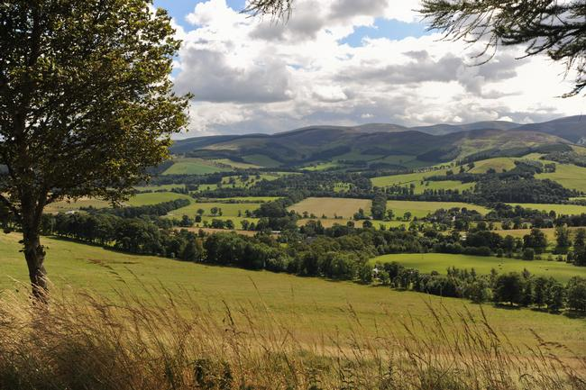 View from Glentress