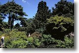 Botanical Gardens, Edgebaston - Picture courtesy of www.britainonview.com