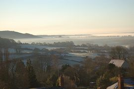 Misty Vew from Cottage and Garden