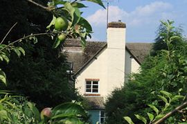 Apple Tree House - Apple Tree House