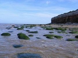 Rockpools at the foot of the cliffs