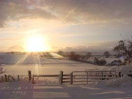 Lochton Farm Cottages - View to the cheviots