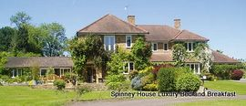 Spinney House - Spinney House, Binfield