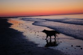 One of Brancaster beach's fabulous sunsets - the sky is astounding