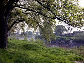Airmyn river bank © Kate Turner