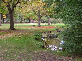 Fordbridge Road Park © Michelle Freeman