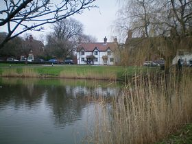 The village pond © Philip Cookson