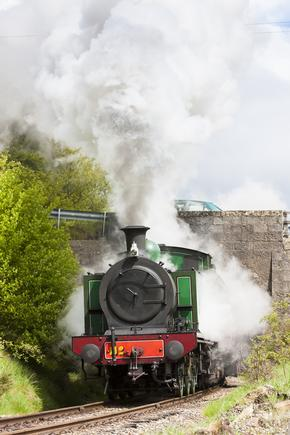 Small steam locomotive and lots of steam passing under bridge on the Strathspey Railway