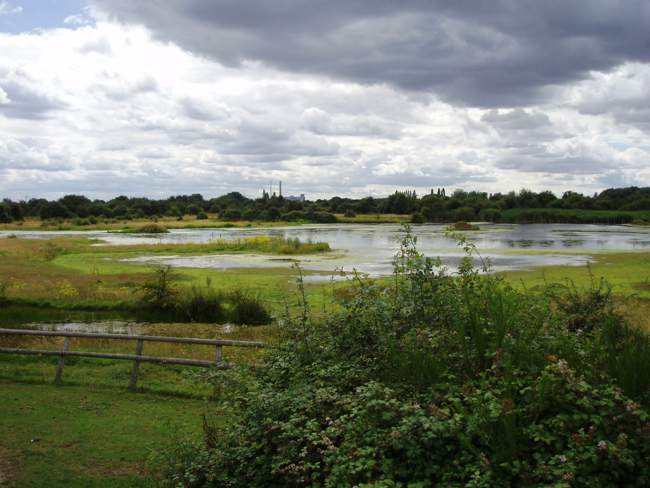 Chase Nature Reserve Barking and Dagenham