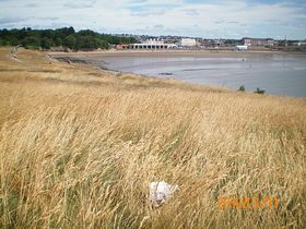 Barry island from Friars Point © Philip Cookson