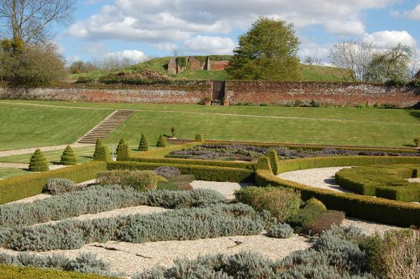 Restored tudor garden with ruins of Basing House in the background