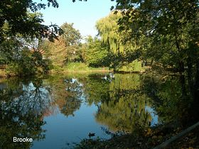 Oneof the lovely ponds in the village © Peggy Cannell